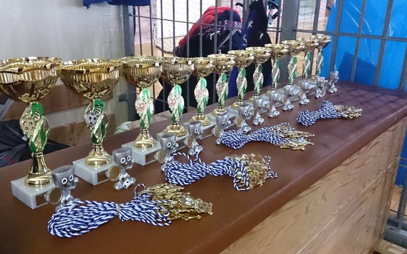 SCALA gewinnt Benefiz-Turnier der E2!